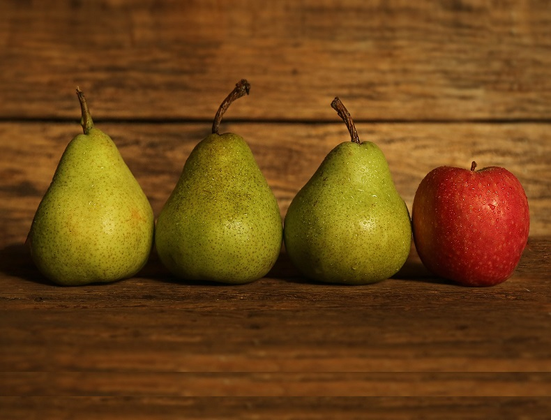 SBAGLIANDO SI IMPARA: NUOVA EDIZIONE - RICHIESTI 6 CREDITI DEONTOLOGICI E 6 FORMATIVI